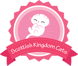 Scottish Kingdom Cats